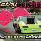 2009 PM Handout Cathy Belcher wm