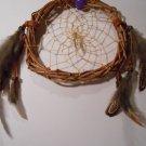 HandMade Dreamcatcher Grapevine Native Art Sinew Feathers Decoration Mandella 14
