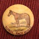 1896 pepsin gum company advertising pin back, sunol the horse