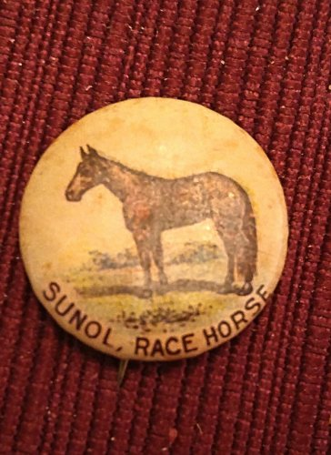 1896 pepsin gum company advertising pin back, sunol the horse