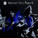 redhotchili Autographed Preprint Signed Photo