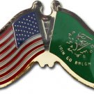 Erin-Go-Bragh Friendship Pin