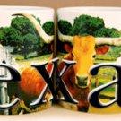 Texas Coffee Mug