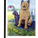 "Briard (Showing Him the Ropes) - 11""""x15"""" 2-Sided Garden Banner"
