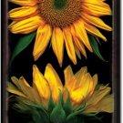 Sunflowers on Black Toland Art Banner
