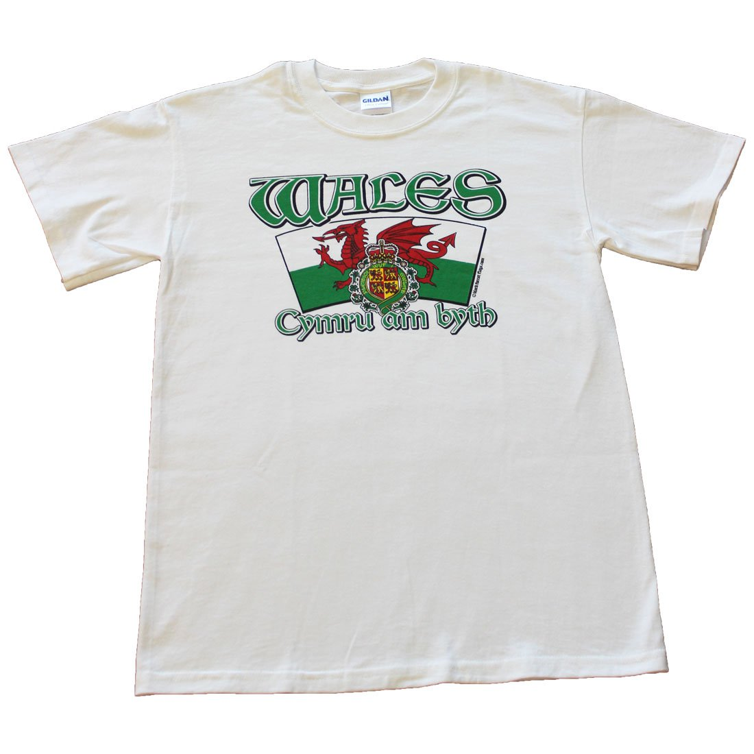 Wales International T-Shirt (L)