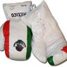 Mexico - 16 oz. Boxing Gloves