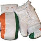 Ireland - 16 oz. Boxing Gloves