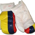 Colombia - 16 oz. Boxing Gloves