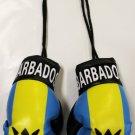Barbados Mini Boxing Gloves