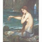 A Mermaid Art Print 24x32 John Waterhouse 1900