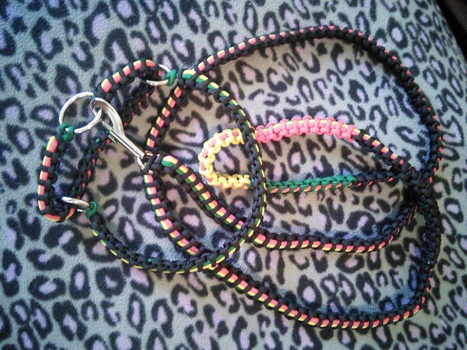 Paracord Dog Leash & Collar set
