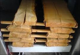 Survivalist Timber Drying eBook