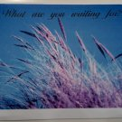 "Stationery, Evangelistic Greeting cards, title: ""What are you waiting for?"""