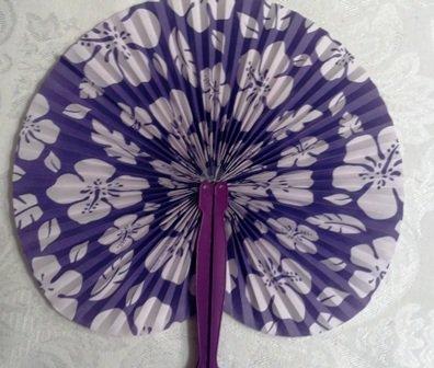 purple hibiscus by chidimanmanda ngozi adichie essay