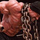 Bodybuilder BRANCH WARREN High Definition 13x19 inch Photo Picture Print