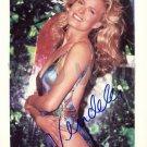 Gorgeous  VANDELA KIRSEBOM Signed Autograph 8x10  Picture Photo REPRINT