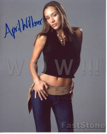 Gorgeous APRIL WILKNER Signed Autograph 8x10 inch. Picture Photo REPRINT