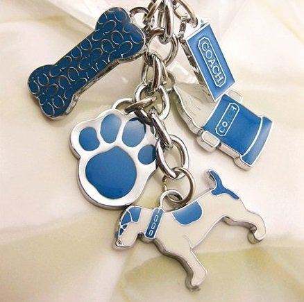 Dog Bone Icecream Footprint Mix Key Chain Key Ring Charm Fob