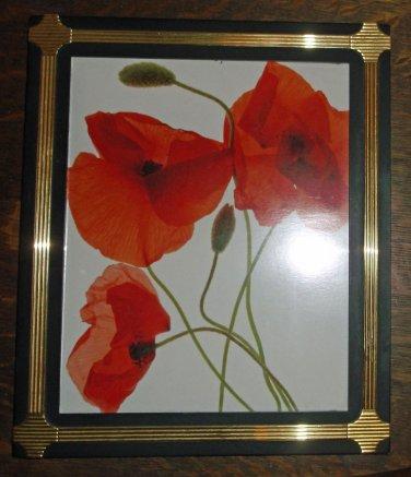"""Black w/  Brass Inlay Frame w/ Art Print of Poppies, 11.5"""" X 9.75"""