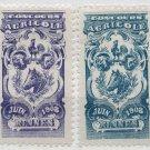 (I.B) France Cinderella : Agricultural Exhibition (Rennes 1908)