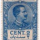 (I.B) Italy (Libya) Revenue : Duty Stamp 2c (1915 on 1914)