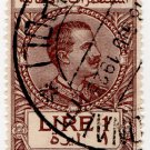 (I.B) Italy (Libya) Revenue : Duty Stamp 1L (1920 on 1919 OP)