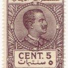 (I.B) Italy (Libya) Revenue : Duty Stamp 5c (1922)