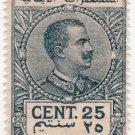 (I.B) Italy (Libya) Revenue : Duty Stamp 25c (1919)