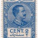 (I.B) Italy (Libya) Revenue : Duty Stamp 2c (1914)