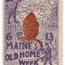 (I.B) US Cinderella: Maine Old Home Week (1900)