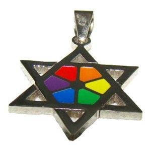 Gay Pride Rainbow Star of David Steel Pendant & Chain
