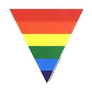 Rainbow Triangle Vinyl Bumper Sticker Gay Pride Lesbian