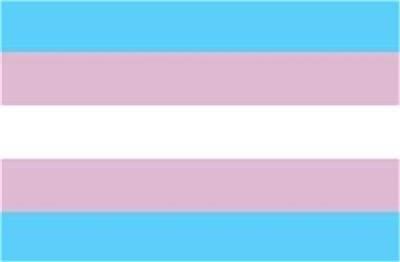 "Transgender Flag Sticker 3"" x 5"" Transgendered Pride"