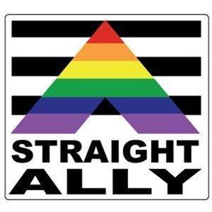 Straight Ally Gay Pride Bumper Sticker
