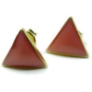 Gay Pride Pink Triangle Enamel Earrings