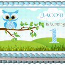 "Edible BLUE OWL 1st year image cake topper 1/4 sheet (10.5"" x 8"")"