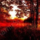 *Golden Autumn* fine very colorful NATURAL LINEN CANVAS artwork