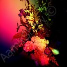 *#2 Rainbow Bunch of Flowers* fine very colorful NATURAL LINEN CANVAS artwork