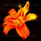 *Big Gold Lily* natural linen canvas classical art reaslim