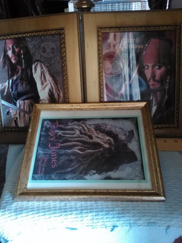 Pirates of Caribbean pictures