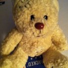 Sweet plush Teddy Bear Get Well sick Stitches Boo Boo fever ill hospital gift