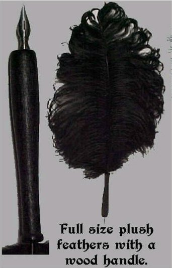 Ostrich Feather Pens sa