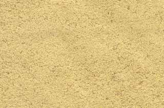 Brewers Yeast 1lb