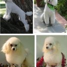 Lot Of 6 White Poodle Dog Fabric Panel Quilt Squares
