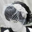 Birdcage Wedding Headpiece ;Crystal Rhinestone Applique Bridal Tiara ;Wedding Veil headband#r1