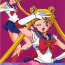 Sailor Moon Amada Pull Pack PP #360