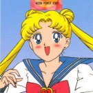 Sailor Moon Amada Pull Pack PP #391