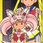 Sailor Moon Graffiti card 276