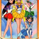 Sailor Moon Graffiti card 295